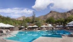 Pool Loews Ventana Canyon