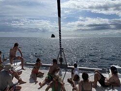 catamaran around monkey head rock!