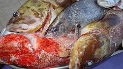 Esta pequeña selección de pescados Salvajes de Lonja, se la ofrecerán los diligentes, jóvenes y premium hosteleros, Álex o Fernando