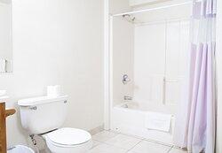 The bathroom of our Basement Apartment Suite: Room 202: Fox Den