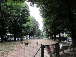 Una delle aree cani