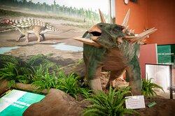 Dinosaur Isle Polacanthus