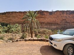Terjit oasis and the Hilux