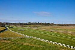Racecourse View