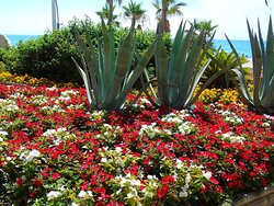 Flowers, statues, playgrounds, on the Promenade