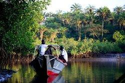 Orango Parque Hotel cuenta con una flota propia de barcos, que traslada a los clientes desde el continente al hotel, además de realizar excursiones por la zona para visitar algunas de las 88 islas que integran el archipiélago.