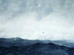 Wilson's Storm Petrels, Oil on Linen.