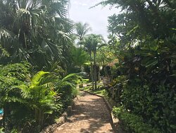 Views of the garden and beach access area