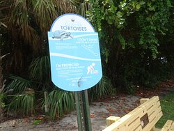 Info signs so people don't dunk the land-lubbers into the sea!