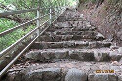 雄滝への道
