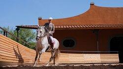 Reschio Estate - Equestrian Centre