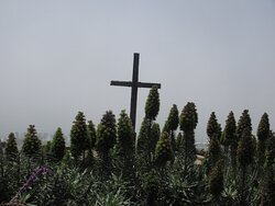 Sierra Cross