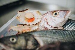 Fresh fish every day