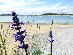 Vue sur l'estuaire de l'Orne au cœur de la Baie de Sallenelles!