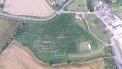 Aerial view of Staunton's Secret Garden Maize Maze