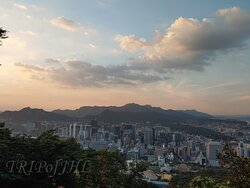Namsan Park in late July