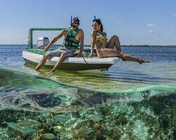 Cancun Jungle Tours