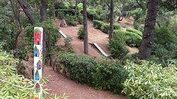 scivoli nel bosco