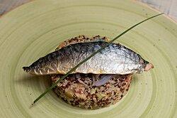 Insalata di Quinoa con sgombro scottato