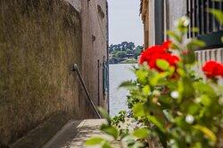 Empruntez les jolies rues de la ville, la rue du Puits en fait partie et vous mènera au Grand Bassin : plus grand point d'eau de l'ensemble du Canal du Midi