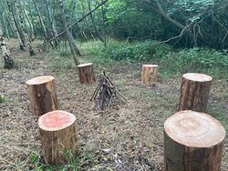 Seating in the shady woodland, picnic benches or bring a rug and enjoy a picnic. Light refreshments available on site.