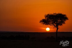 I am not a morning person, but boy do I miss these African sunrises!!