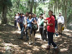 Guided hikes are available for groups by appointment with Master Naturalists and other experts.