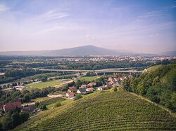 Gorca  One of our vineyard locations.