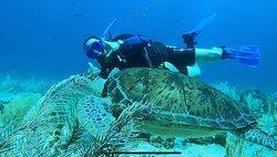 Cancun Reef Scuba Diving!
