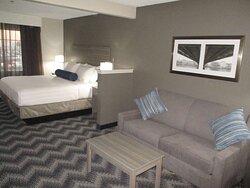 Single King Guest Suites