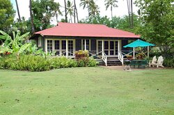 Premium Accessible  Bdrm Oceanfront Cottage