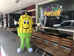 Corny hanging out Downtown Fort Myers