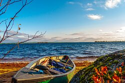 We will organize a nice canoeing tours in Lapland