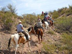 Horseback riding in the Sonoran Desert.