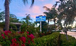 Bougainvillea plants greet you from every angle as you pull up to Hotel Seacrest.