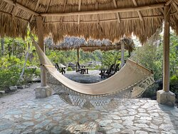 Hammocks for relaxing