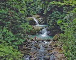 Nos especializamos en tours de cataratas  y caminatas en el pacífico nacional de Costa Rica. Tenemos rutas de trekking unicas y lugares exclusivos para el disfrute de toda la familia.  Siempre enfocados en ofrecer un producto diferente y de calidad.