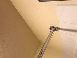 Black Mold in Room 116