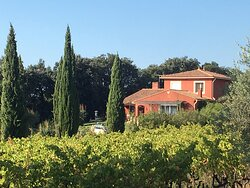 Photo of the Domaine des Lavarines, in vineyards and olive trees