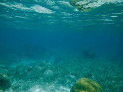 The view while when we went snorkeling