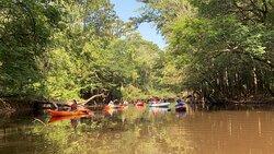 Our Group kayaking Cedar Creek