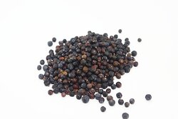 Juniper berries - the main ingredient to gin