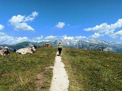 Durante alcune delle più belle escursioni...