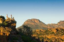 Bushmans Kloof Hiking