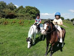 Pony trek...great experience