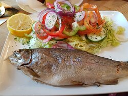 Trout with salad
