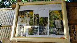 2016年11月に「いがわ小径」をご視察された当時の皇太子ご夫妻の写真が展示されています。