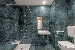 Accessible Bathroom - Roll-In Shower