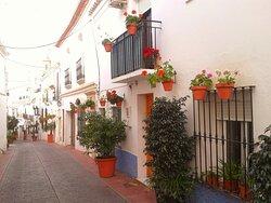 Flower-filled streets