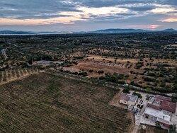 BARAKA Winery